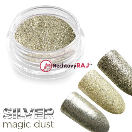 Prášok holografický Silver dust 1g NechtovyRAJ.sk - Daj svojim nechtom všetko, čo potrebujú