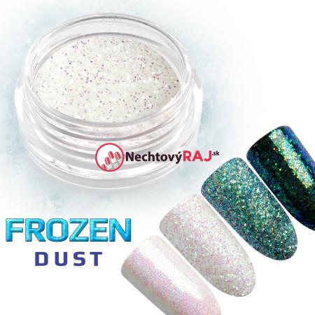 Prášok holografický Frozen dust 1g
