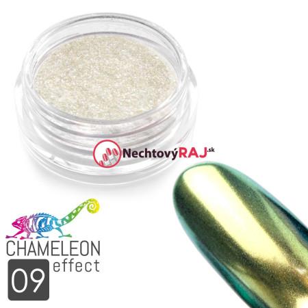 Prášok chameleon efekt 09 NechtovyRAJ.sk - Daj svojim nechtom všetko, čo potrebujú