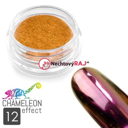 Prášok chameleon efekt 12 NechtovyRAJ.sk - Daj svojim nechtom všetko, čo potrebujú