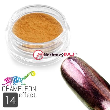 Prášok na nechty chameleon efekt 14 - NechtovyRAJ.sk