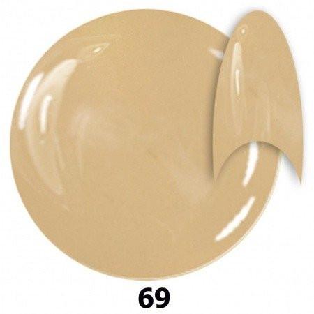 Gél lak NTN 69  6 ml