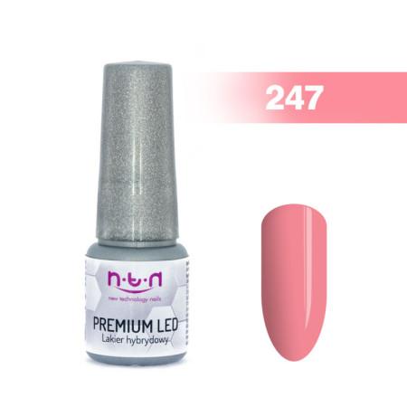 NTN Premium Led gél lak 247 6ml NechtovyRAJ.sk - Daj svojim nechtom všetko, čo potrebujú
