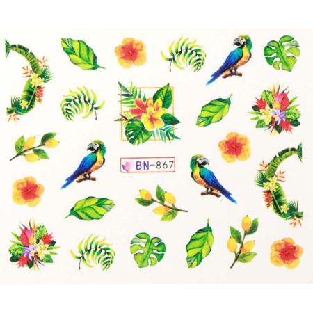 Vodonálepky s motívom papagája BN-867 NechtovyRAJ.sk - Daj svojim nechtom všetko, čo potrebujú