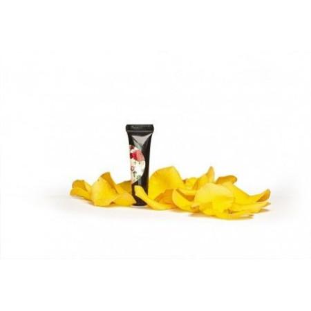 Slowianka® Arter Gel Yellow 3g NechtovyRAJ.sk - Daj svojim nechtom všetko, čo potrebujú